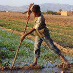 WRF_Progetti_Marocco_01